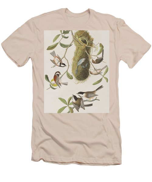 Titmouses Men's T-Shirt (Slim Fit) by John James Audubon
