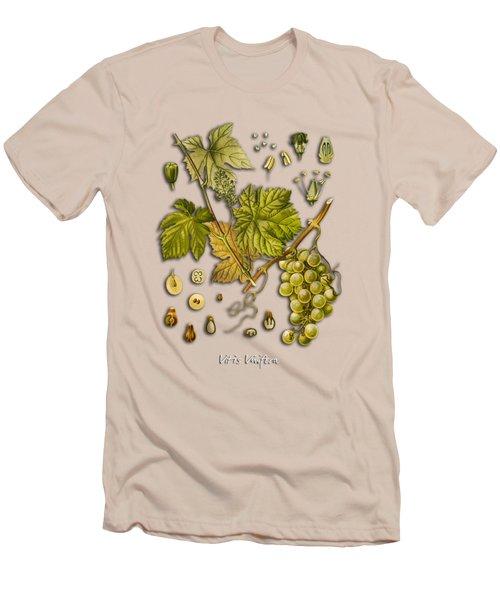 Vitis Vinifera Men's T-Shirt (Slim Fit) by Justyna JBJart