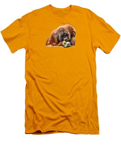 Orangutan Men's T-Shirt (Slim Fit) by Maria Coulson