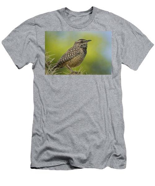 Cactus Wren  Men's T-Shirt (Slim Fit) by Saija  Lehtonen