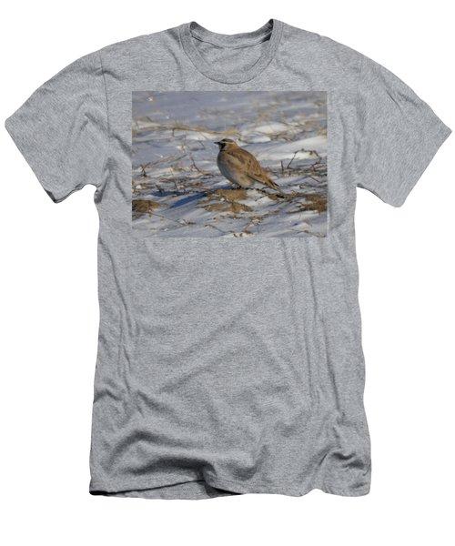 Winter Bird Men's T-Shirt (Slim Fit) by Jeff Swan