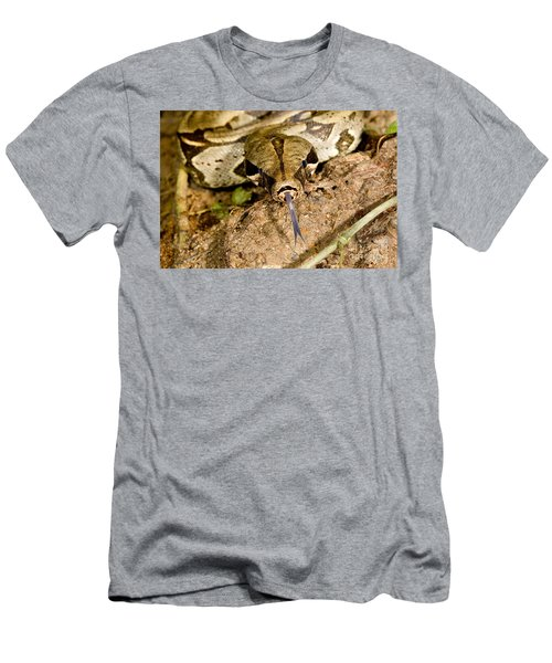 Boa Constrictor Men's T-Shirt (Slim Fit) by Gregory G. Dimijian, M.D.