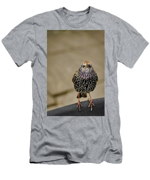 Angry Bird Men's T-Shirt (Slim Fit) by Heather Applegate