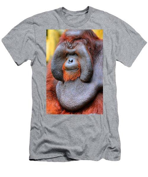 Bornean Orangutan Iv Men's T-Shirt (Slim Fit) by Lourry Legarde