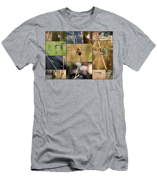 Collage Marsh Life Men's T-Shirt (Slim Fit) by Carol Groenen