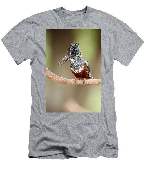 Giant Kingfisher Megaceryle Maxima Men's T-Shirt (Slim Fit) by Panoramic Images