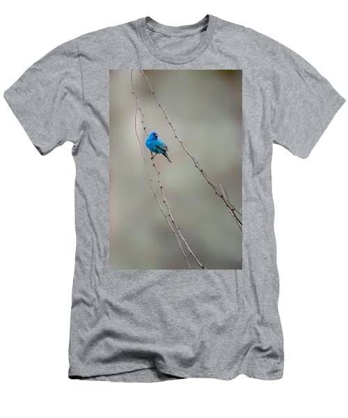Indigo Bunting Men's T-Shirt (Slim Fit) by Bill Wakeley