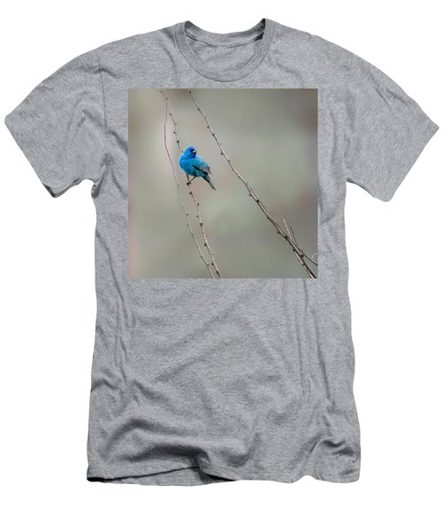 Indigo Bunting Square Men's T-Shirt (Slim Fit) by Bill Wakeley