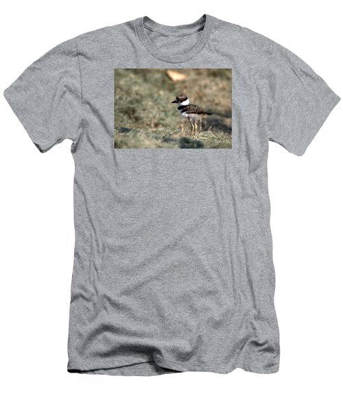 Its A Killdeer Babe Men's T-Shirt (Slim Fit) by Skip Willits
