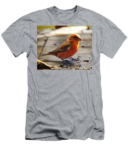 Look - I'm A Crossbill Men's T-Shirt (Slim Fit) by Robert L Jackson