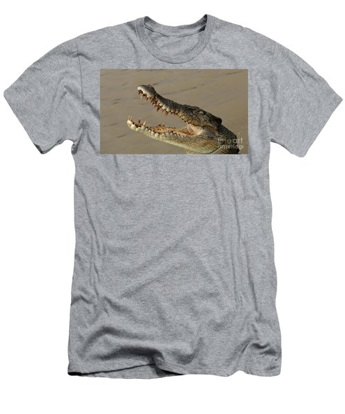 Salt Water Crocodile 1 Men's T-Shirt (Slim Fit) by Bob Christopher