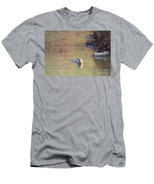 Sunrise Otter Men's T-Shirt (Slim Fit) by Mike Dawson