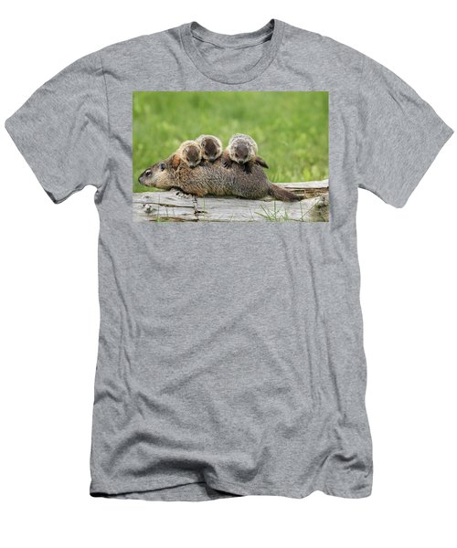 Woodchuck Carrying Young Minnesota Men's T-Shirt (Slim Fit) by Jurgen & Christine Sohns