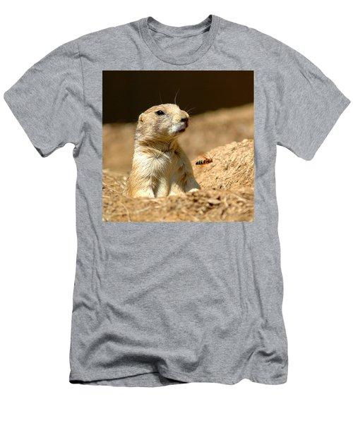 Prarie Dog Bee Alert Men's T-Shirt (Slim Fit) by LeeAnn McLaneGoetz McLaneGoetzStudioLLCcom