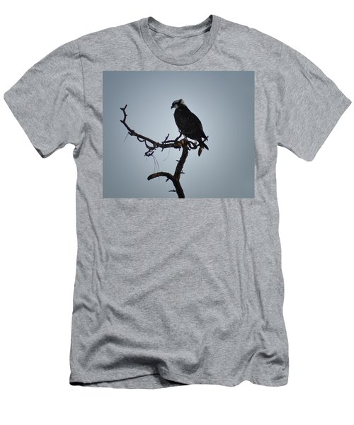 The Osprey Men's T-Shirt (Slim Fit) by Bill Cannon