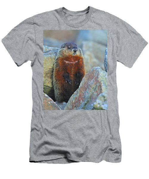 Woodchuck Men's T-Shirt (Slim Fit) by Tony Beck