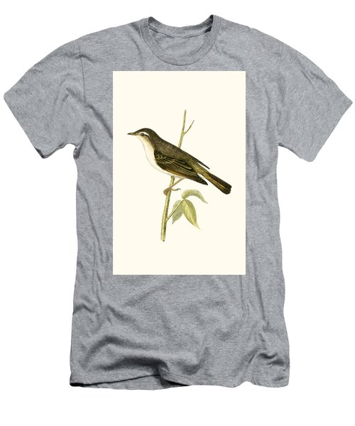 Bonelli's Warbler Men's T-Shirt (Slim Fit) by English School