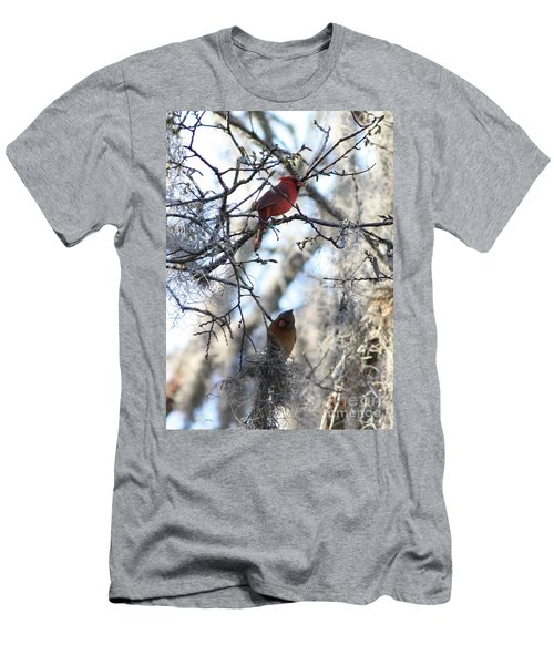 Cardinals In Mossy Tree Men's T-Shirt (Slim Fit) by Carol Groenen