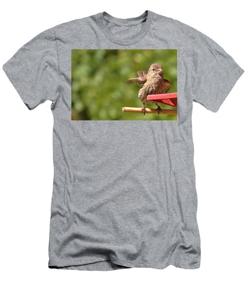 Crossbill Female At Feeder        Summer       Indiana Men's T-Shirt (Slim Fit) by Rory Cubel