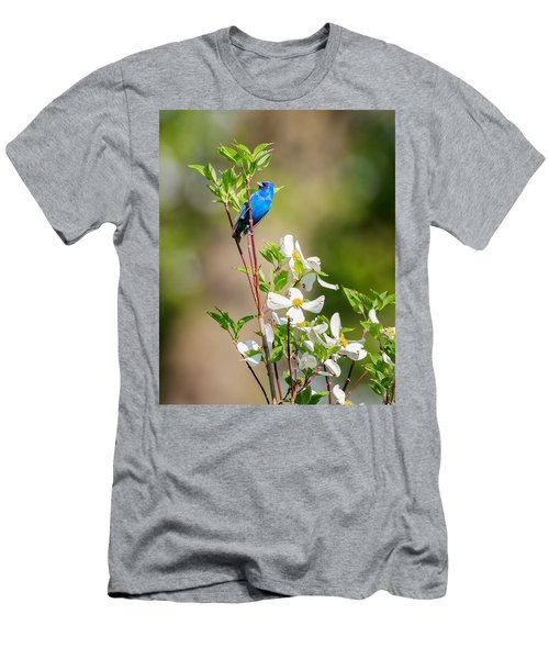 Indigo Bunting In Flowering Dogwood Men's T-Shirt (Slim Fit) by Bill Wakeley
