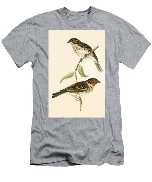 Little Bunting Men's T-Shirt (Slim Fit) by English School
