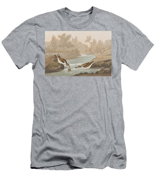 Little Sandpiper Men's T-Shirt (Slim Fit) by John James Audubon