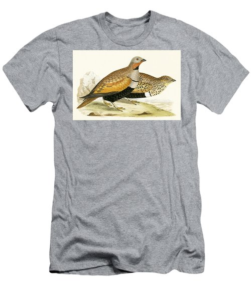 Sand Grouse Men's T-Shirt (Slim Fit) by English School