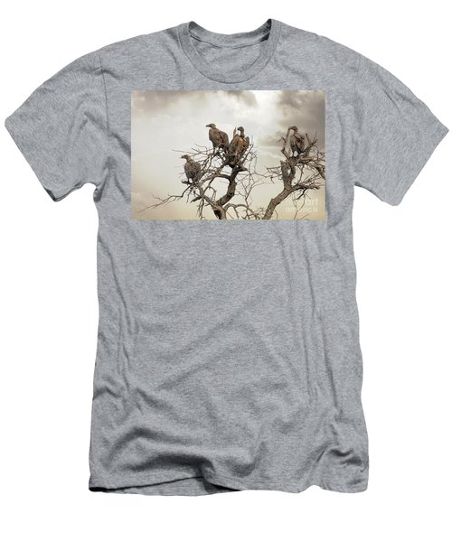 Vultures In A Dead Tree.  Men's T-Shirt (Slim Fit) by Jane Rix