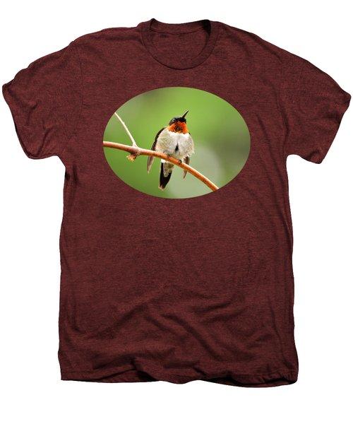 Male Ruby-throated Hummingbird Men's Premium T-Shirt by Christina Rollo