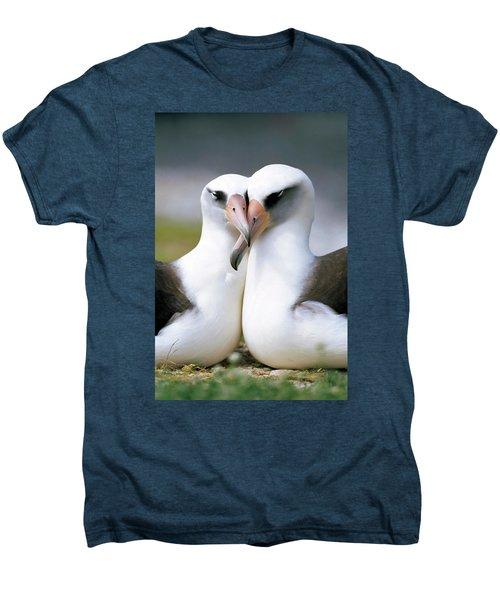 Laysan Albatross Phoebastria Men's Premium T-Shirt by Tui De Roy