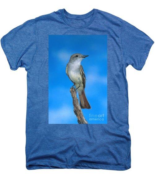 Ash-throated Flycatcher Men's Premium T-Shirt by Anthony Mercieca