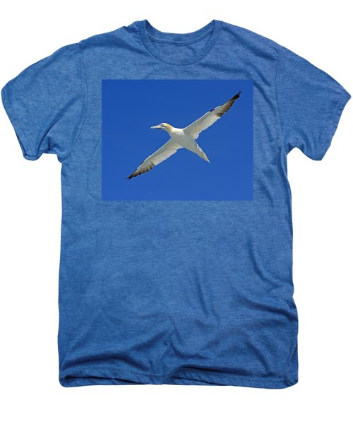 Northern Gannet Men's Premium T-Shirt by Tony Beck