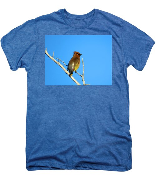 Cedar Waxwing Men's Premium T-Shirt by Dianne Cowen