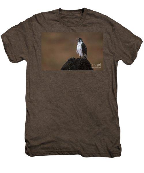 Augur Buzzard Men's Premium T-Shirt by Art Wolfe