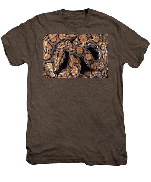 Brazilian Rainbow Boa Men's Premium T-Shirt by Art Wolfe