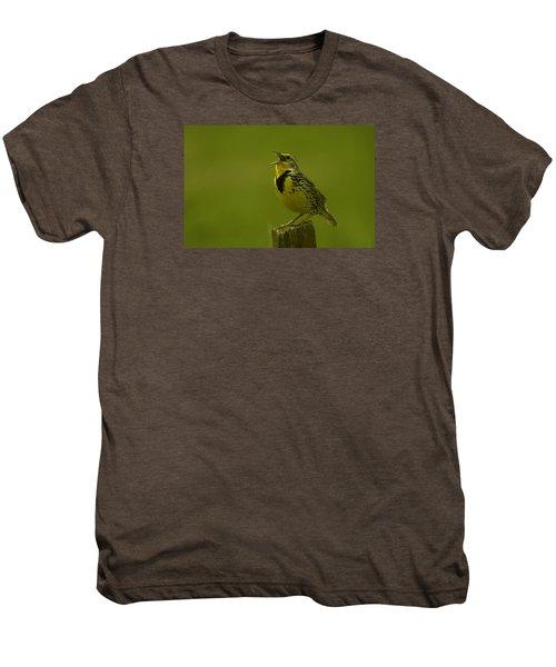The Meadowlark Sings Men's Premium T-Shirt by Jeff Swan