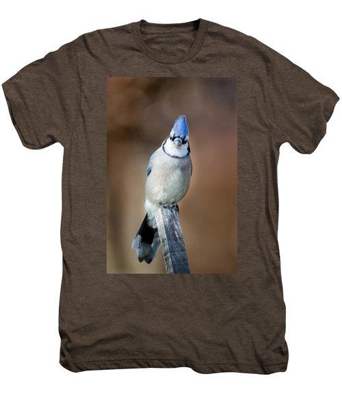 Backyard Birds Blue Jay Men's Premium T-Shirt by Bill Wakeley