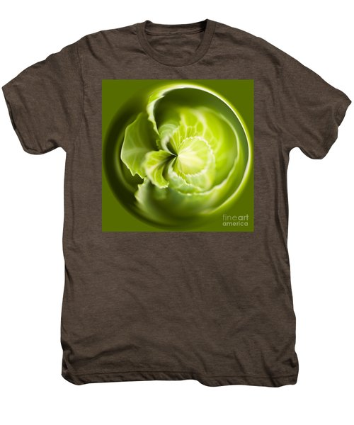 Green Cabbage Orb Men's Premium T-Shirt by Anne Gilbert