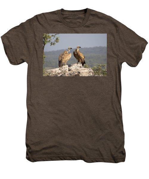 Griffon Vulture Pair Extremadura Spain Men's Premium T-Shirt by Gerard de Hoog