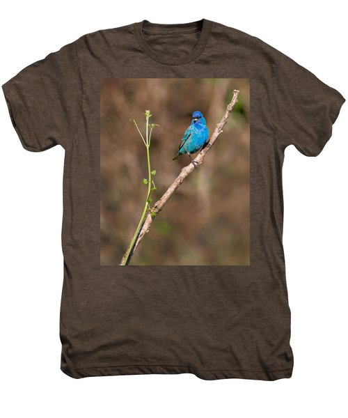Indigo Bunting Portrait Men's Premium T-Shirt by Bill Wakeley