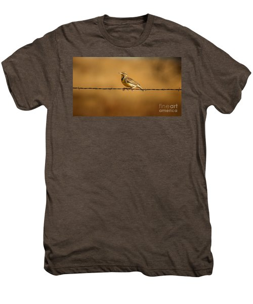 Meadowlark And Barbed Wire Men's Premium T-Shirt by Robert Frederick