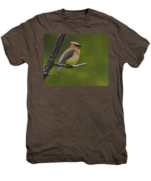 Wax On Men's Premium T-Shirt by Tony Beck