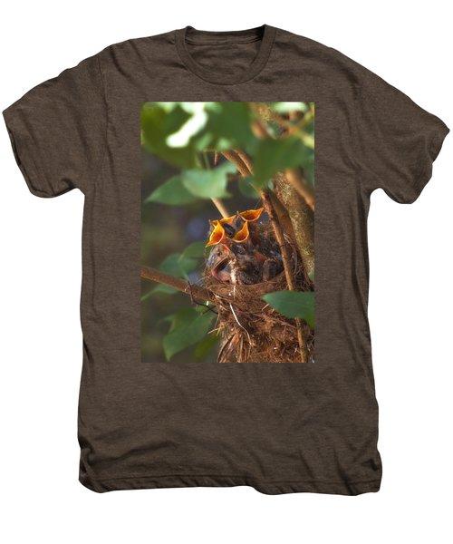 Feeding Time Men's Premium T-Shirt by Joann Vitali