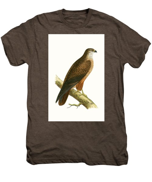 African Buzzard Men's Premium T-Shirt by English School