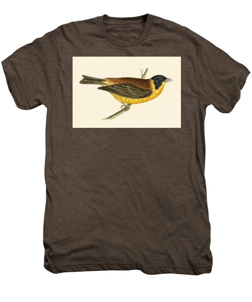 Black Headed Bunting Men's Premium T-Shirt by English School