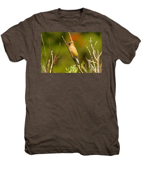 Fishercap Cedar Waxwing Men's Premium T-Shirt by Adam Jewell