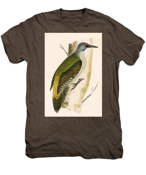 Grey Woodpecker Men's Premium T-Shirt by English School
