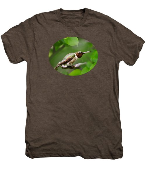 Hummingbird Hiding In Tree Men's Premium T-Shirt by Christina Rollo