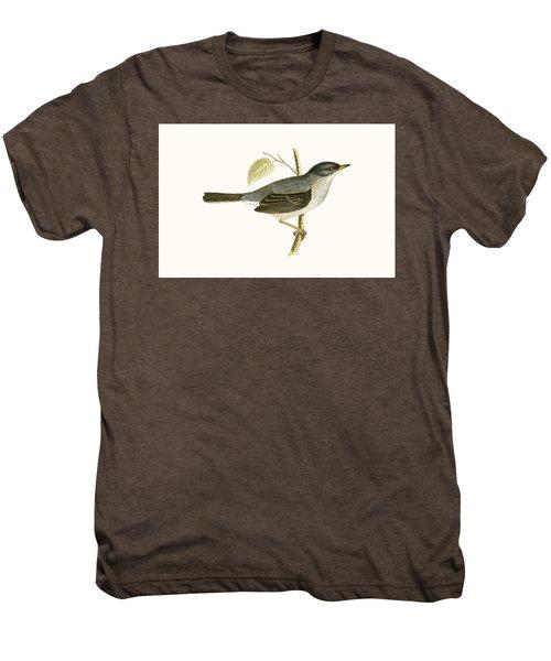 Marmora's Warbler Men's Premium T-Shirt by English School