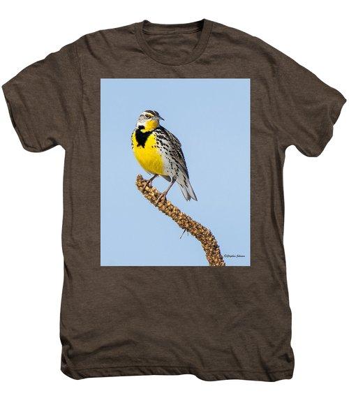 Meadowlark On Mullein Stalk Men's Premium T-Shirt by Stephen Johnson